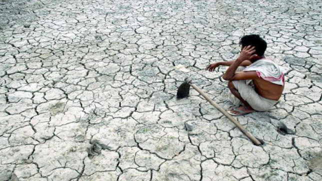 Supreme Court asks Centre to draw up action plan to check farmers' suicides
