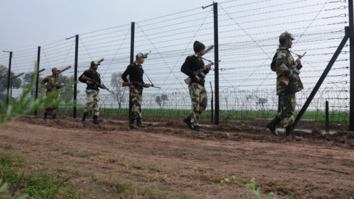 BSF seizes 70 cattle, 2 trawlers in Bengal