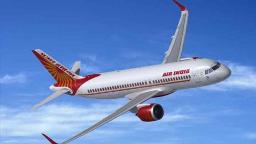 Air-India-gets-hit-by-bird