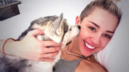 Miley Cyrus immortalises her pup with tattoo