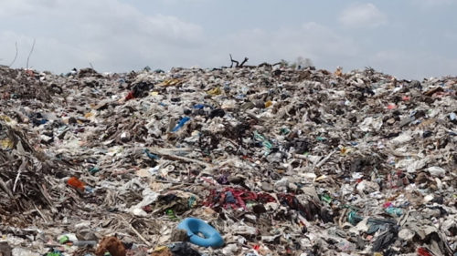 India needs New Delhi-size landfills for waste by 2050: Report