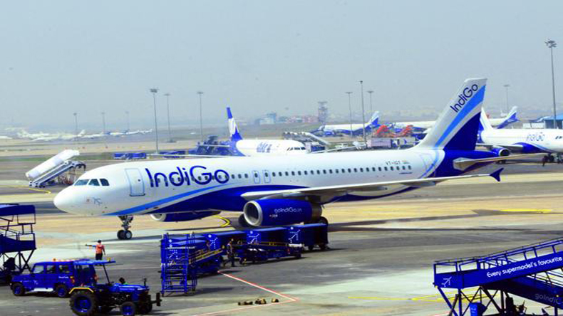 IndiGo does not want govt in any AI deal
