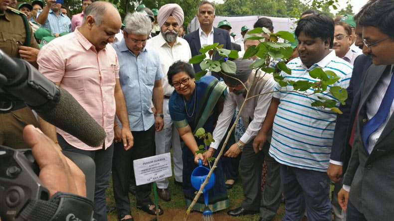 'Greening Delhi' project launched