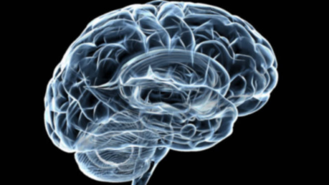 New York: Women's brains more active than that of men; suggests study