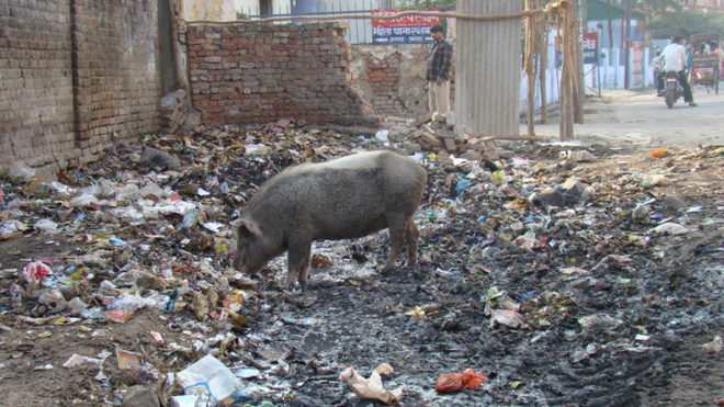Agra needs freedom from filth, say residents