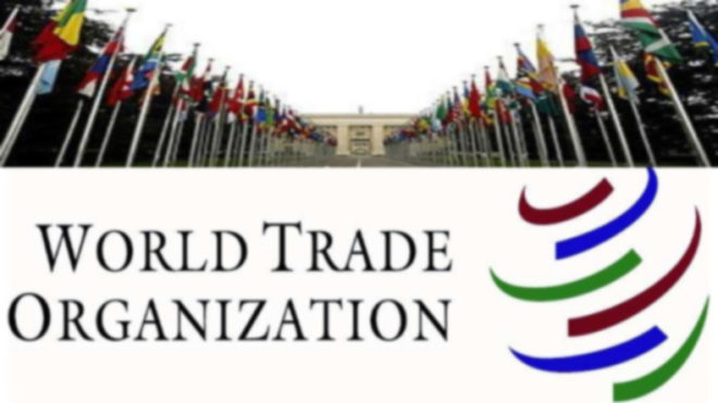India should avoid abuse of trade remedy measures: China