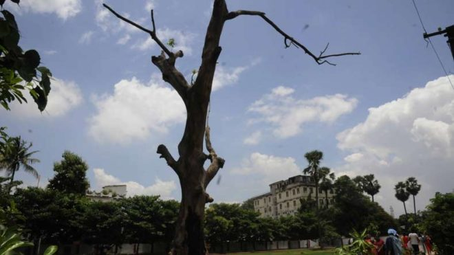Partly cloudy Monday morning in Delhi