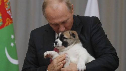 Russian President Vladimir Putin's puppy cuddle is adorable!