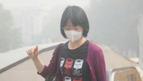 Beauty-fixes-for-air-pollution