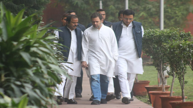 Congress declares roadmap for Rahul Gandhi elevation to Party President