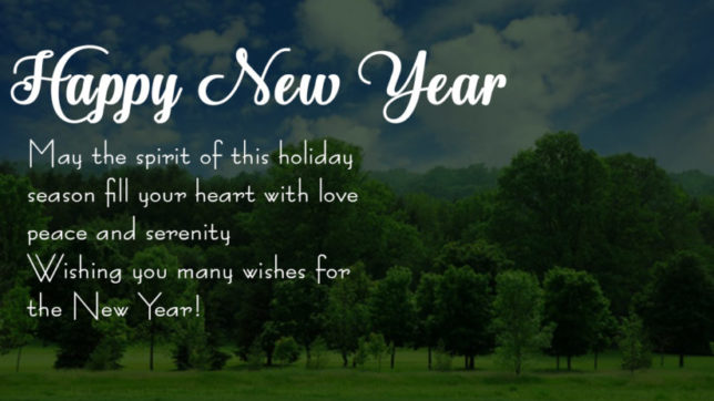 Happy New Year 2018 Images wishes Quotes Greetings SMS for January 1st