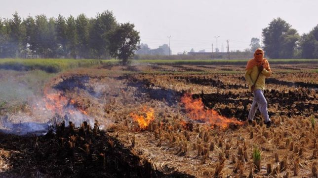 Farm experts suggest use of smart machinery to check stubble burning in India