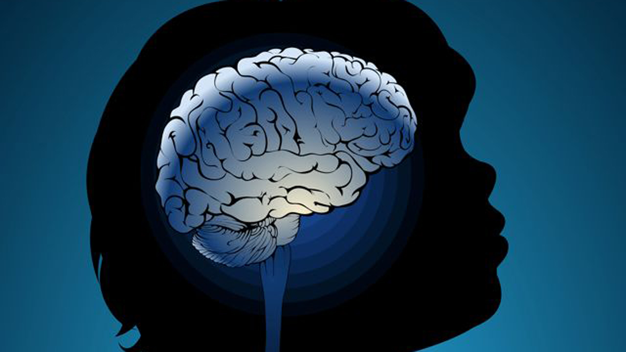 facebook s effects on children s brains Protect our children's brains by sharon lerner the revised risk assessment relied on evidence of neurodevelopmental effects in fetuses and children resulting from chlorpyrifos exposure and drew on studies showing increased risk of delays in mental development, intelligence loss, attention problems.