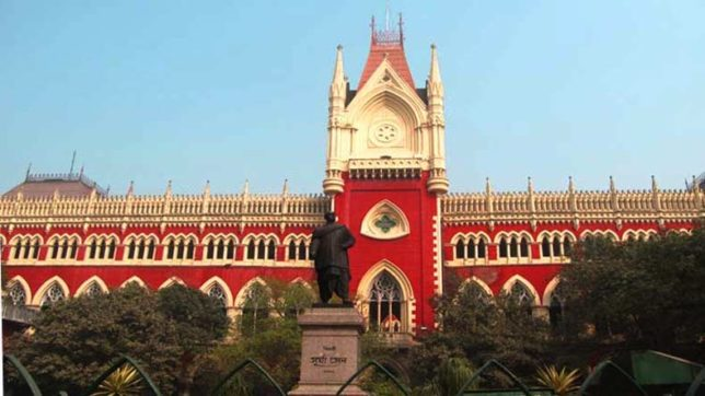 Durga idol immersion row: Calcutta High Court to pass order on September 21