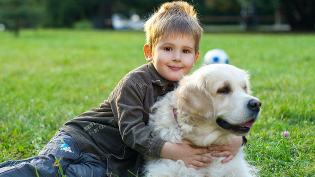 Kids-and-dogs
