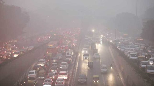 With air pollution in mind, Delhi residents suggest host of remedies