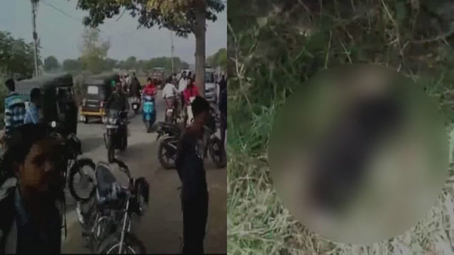 Dog spotted carrying a new born's body outside hospital in Madhya Pradesh