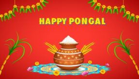 Pongal 2018: Date, time, significance, celebration and rituals of the harvest festival