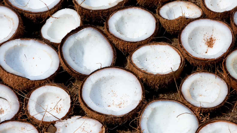 Goa: Women Congress members sell coconuts to protest against