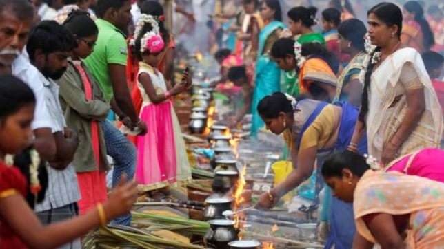 Pongal messages and wishes in Hindi for 2018: WhatsApp messages, Pongal wishes and greetings, SMS, Facebook posts to wish everyone