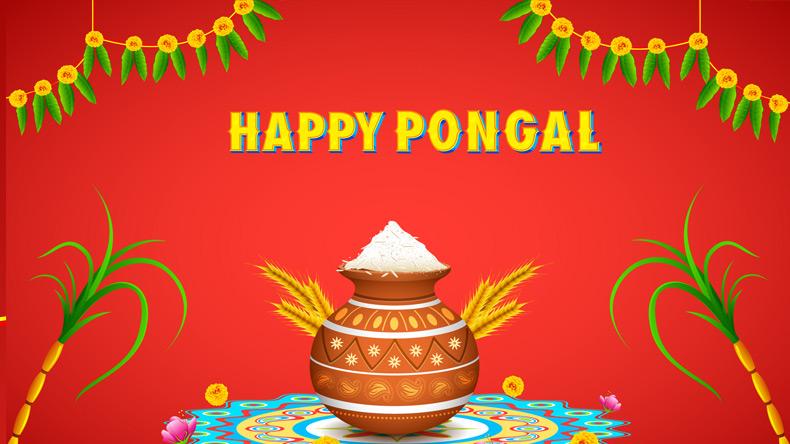 Pongal messages and wishes in english for 2018 whatsapp messages for all the latest lifestyle fashion news download newsx app m4hsunfo