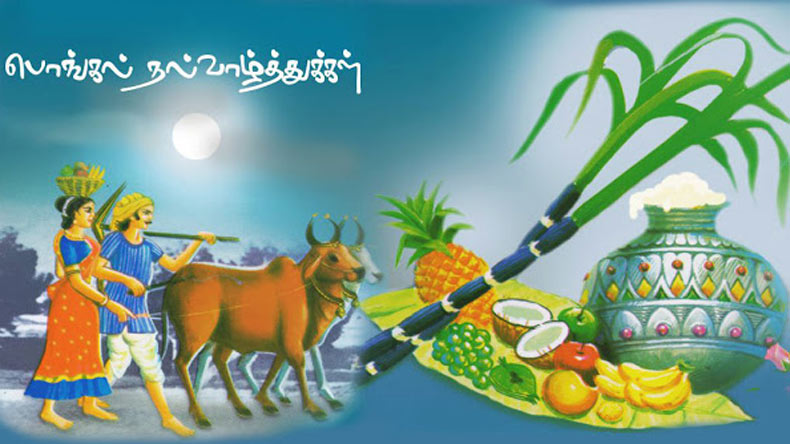 Pongal messages and wishes in tamil for 2018 whatsapp messages so here we bring you the whatsapp messages pongal wishes and greetings sms facebook posts to wish everyone m4hsunfo Image collections