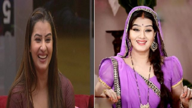 Bigg Boss 11: Shilpa Shinde's journey from 'controversy' queen to Shilpa Maa