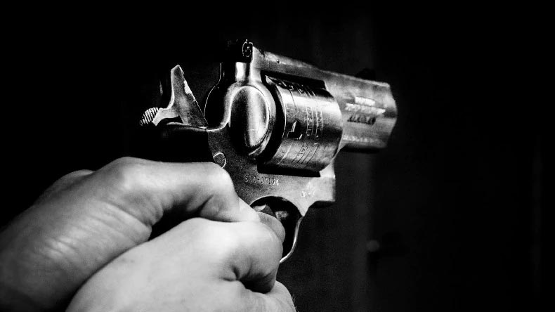 Gun, Delhi, Pub owner, Shalimar Bagh, Accidental death, Shot, Delhi news, Regional news, National news, Delhi man shot dead, Russian roulette, What is Russian roulette, India news, Google news