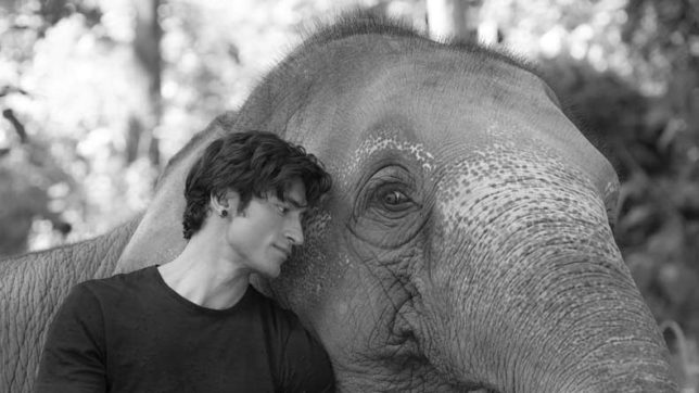 Junglee first look: Vidyut Jammwal gives high-five to an elephant in this adorable poster