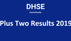 DHSE results 2019