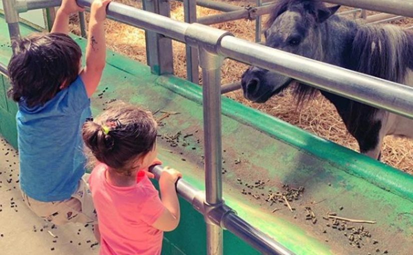 Taimur Ali Khan hanging out with cousin Inaaya Naumi Khan at a farm is the cutest thing on Internet today