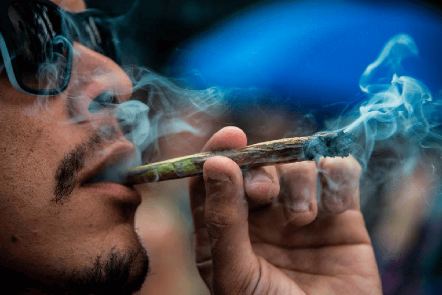 Delhi 3rd highest ganja consuming city in the world, says study