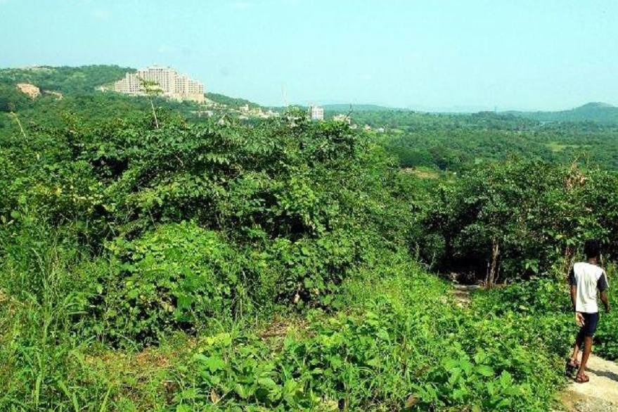 Mumbai: Aarey tree cutting begins for metro shed, residents, activists protest