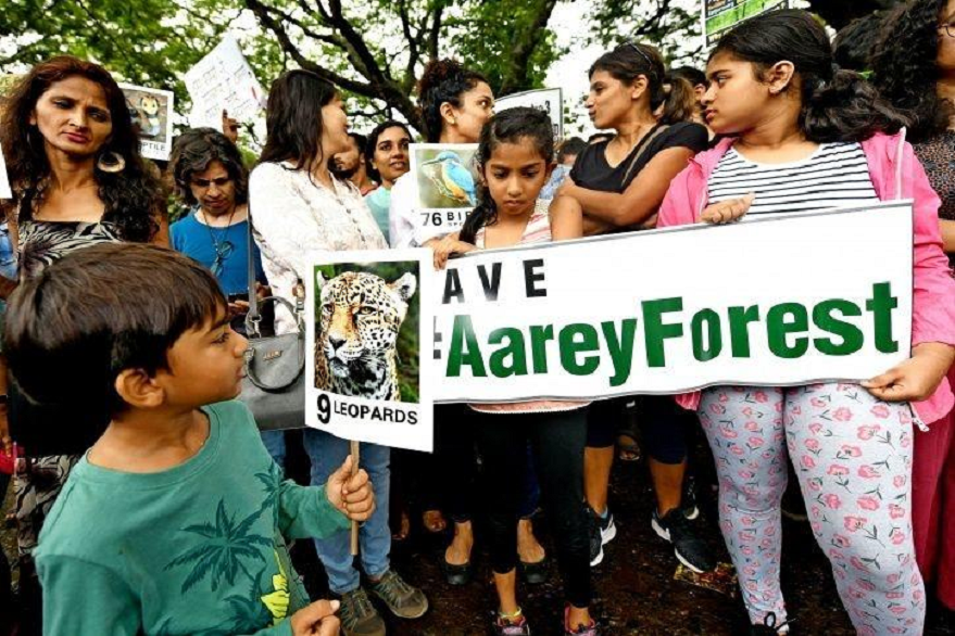 Aarey tree cutting: 10 things to know about protests, arrests, politics and felling of trees